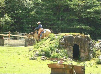 Ranch Horse Festival Biel