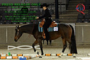Faithfull Revolution - Trail Futurity