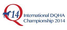 Q14-Logo