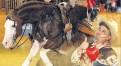 Summer of Reining: SVAG CS Classic 2016