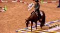 Spannender Trail-Selektionslauf an der Select World in Amarillo TX