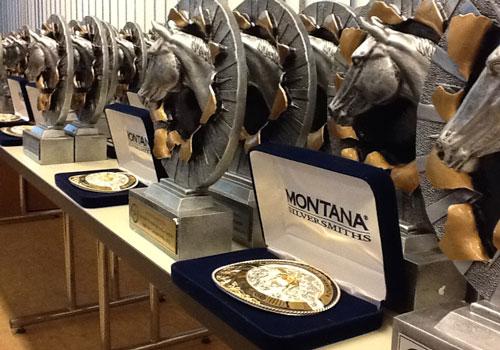 Die SWRA Trophys und Buckles für die Highpoint Champions 2015
