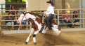 $ 80.000-added AustrianRHA Futurity & NRHA Show