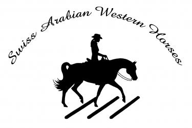 Logo SAWH